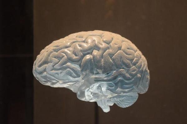 反射神経とは? 家でもできる鍛える方法を解説