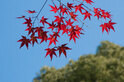9・10月の行楽の秋こそ紫外線にご用心!