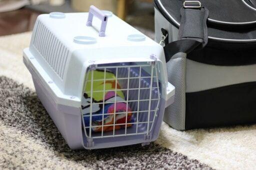 猫用キャリーケース