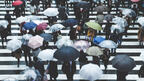降水確率0%でも持ち歩く人は10%!? 傘は降水確率何%で持っていく?