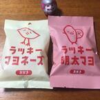【日刊Sumai】編集部・君島の取材、ときどきプライベート日記 vol.57