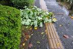 「火災保険」には最低でも入るべき!台風21号の被害に遭ってわかった!