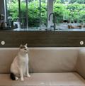 【日刊Sumai】編集部・丸の取材、ときどきプライベート日記 vol.62