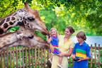 大人1人で2000円以上!入園料が高い日本の動物園トップ10
