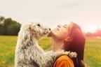 犬の平均寿命は14.85歳!愛犬が「元気で長生きする」接し方