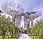 シンガポールの近未来植物園「ガーデンズ・バイ・ザ・ベイ」