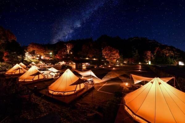 星空の下で映画を楽しむ!野外映画フェス「夜空と交差する森の映画祭」10月開催