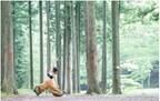 冬の丹沢で「ヨガ&キャンプフェス」を開催