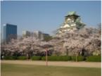 桜の名所・大阪城公園で女性限定「花見ヨガ」を開催