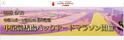 競馬場を走り抜ける「中京競馬場バックヤードマラソン」開催