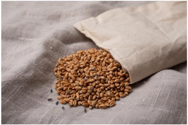 「KLIPPAN 麦の温冷ネックピロー」に新柄が登場