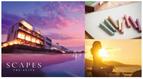 神奈川のホテルが限定宿泊プランを実施