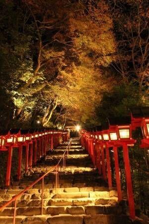 紅葉と灯籠のライトアップ「京の奥座敷・貴船もみじ灯篭」開催