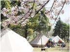 「桜の名所」でグランピング体験