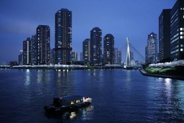 星のや東京「東京・夜桜舟あそび」で過ごす