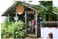 日本初上陸「ココナッツアイスクリーム」専門店がオープン