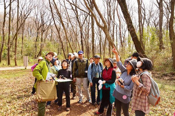毎年恒例イベント「春のうららかウォーキング」開催