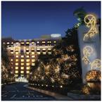 浦安市のホテルが「ウィンターイルミネーション」を点灯
