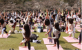 大阪と東京で「Sakura Yoga」 開催