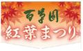 秋の恒例行事、京王百草園「紅葉まつり」始まる