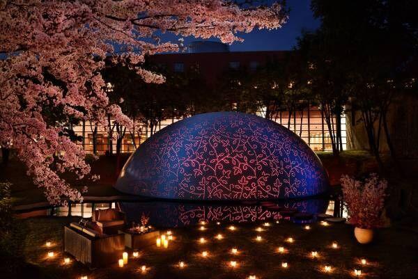 星野リゾート八ヶ岳でロゼワインと夜桜見物!1日1組限定の特別プラン