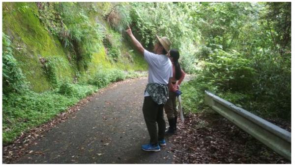 自然豊かな亀山湖畔で、癒しの休日を過ごすプランが登場