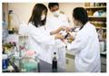 米国発「有機純米酢」が逆輸入で日本上陸!