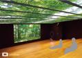 浅草にいながら北海道へ、デジタル森林浴空間オープン