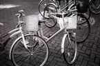 健康・エコ指向から自転車が急増--思わぬ事故への対処は