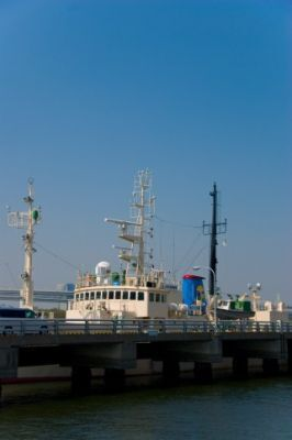 NEXIと三井住友海上が提携 増大する第3国輸出をカバー