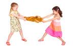 子どものおもちゃの取り合い、親としてどう対応する?