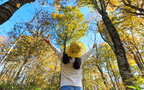 紅葉シーズン到来! 子どもと楽しむ、もみじ狩り