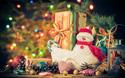 書店員さんに聞くクリスマスに贈りたい絵本2015 ~小学1年生向け~