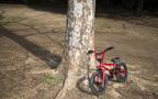 9,500万円! 自転車事故の小学生母に賠償金請求(親子を守る自転車保険特集 Vol.1)