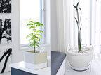 インテリアのコツは植物にあった! 部屋に馴染むおしゃれな植木鉢