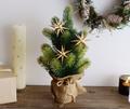 壁やちょっとした棚上スペースに飾れる、クリスマスアイテム5選