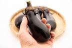 『ナスに栄養値がない』は嘘!効果を引き出す調理法・食べ方で健康生活!