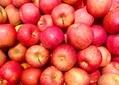 りんごの栄養は加熱しても消えない! 正しい食べ方で効果を実感しよう