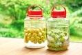 【梅酒の効能】美肌づくりや腸活に役立つ!夏バテ予防や冷え性改善にも