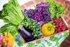 夏野菜で暑さを吹き飛ばそう!人気ランキングやおすすめレシピ大紹介