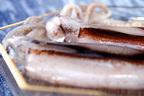 【イカの栄養】うれしい健康効果がたくさん! エビやタコとの比較も