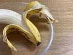 バナナが黒いと実は食べごろ!美味しくなるタイミングと驚きの効能を紹介