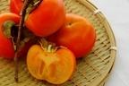 【柿の保存方法】おいしさをキープするには?旬や栄養まで徹底解説!