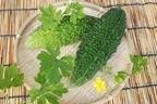 【ゴーヤの栄養】ビタミンCが豊富・夏バテ防止に効果的!おすすめレシピも公開