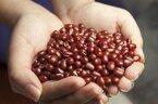 【小豆の栄養】灰汁にも溶け出している!効率よくおいしく摂る方法とは