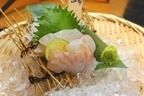 真鯛の旬は年2回!天然・養殖の見分け方からおすすめの食べ方まで紹介