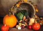 秋野菜には何がある?特徴からおいしい食べ方・家庭での楽しみ方も紹介