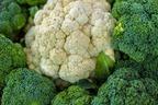 カリフラワーとブロッコリーの違いは?見た目・味だけでなく栄養にも差!