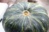 かぼちゃの保存方法を徹底解説!冷凍・冷蔵・常温の保存の仕方とは