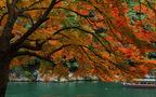 二十四節気の京遊び。「星のや 京都」が提案する、秋の過ごし方